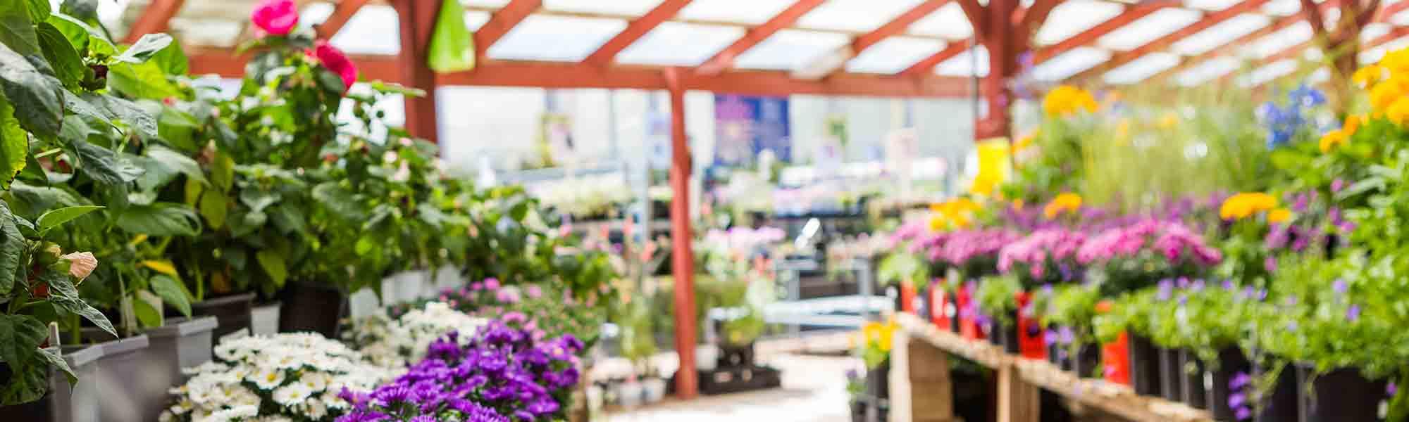rural_garden_centres_2x6_219685807
